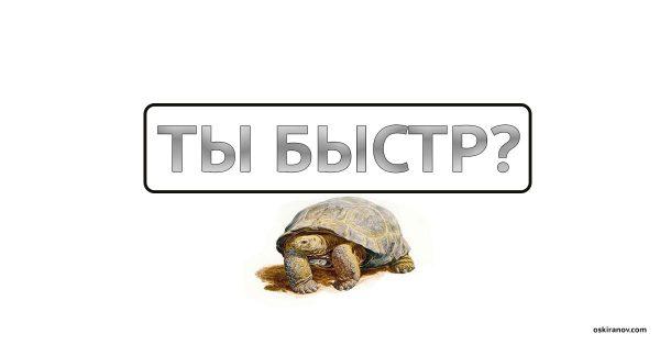 speed_oskiranov