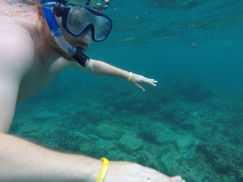 snorkling1